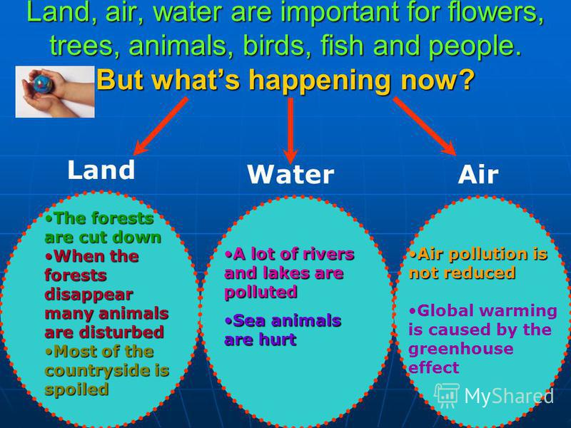The Earth is our environment. If we are not worried about the Earth, some ecological problems appear: Air and water are polluted Air and water are polluted Forests are cut down Forests are cut down Animals are damaged Animals are damaged Wildlife is