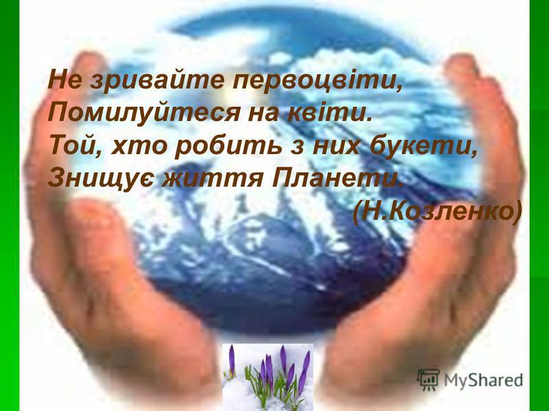 Не зривайте первоцвіти, Помилуйтеся на квіти. Той, хто робить з них букети, Знищує життя Планети. (Н.Козленко)