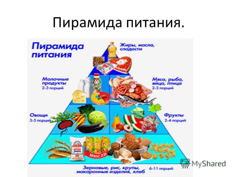 Пирамида питания.