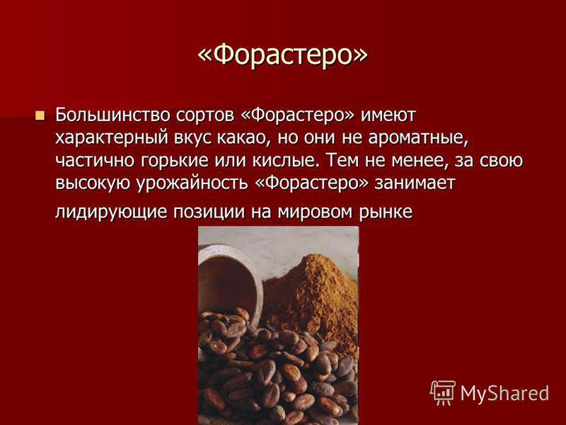 «Форастеро» Большинство сортов «Форастеро» имеют характерный вкус какао, но они не ароматные, частично горькие или кислые. Тем не менее, за свою высокую урожайность «Форастеро» занимает лидирующие позиции на мировом рынке Большинство сортов «Форастер