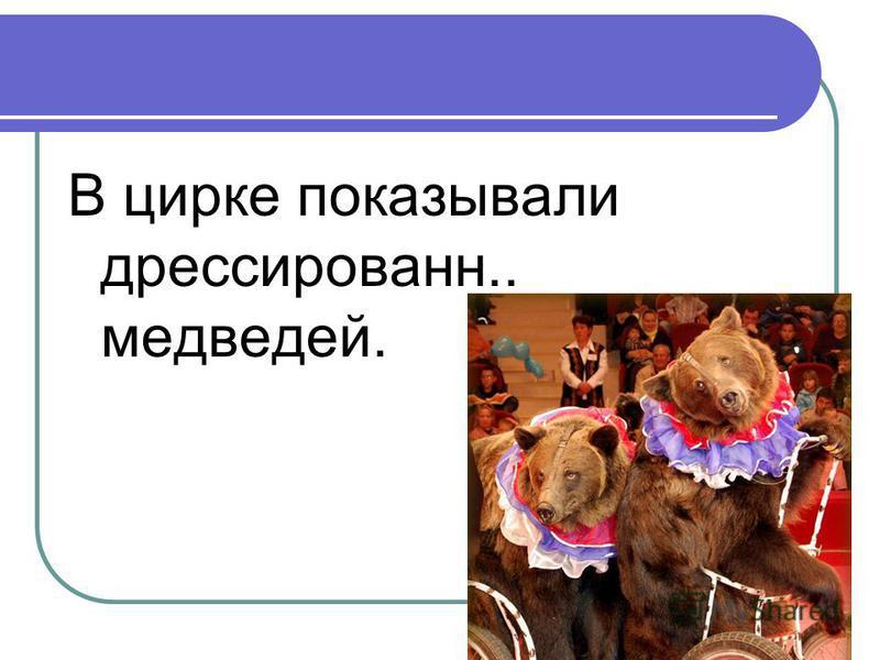 В цирке показывали дрессирован.. медведей.