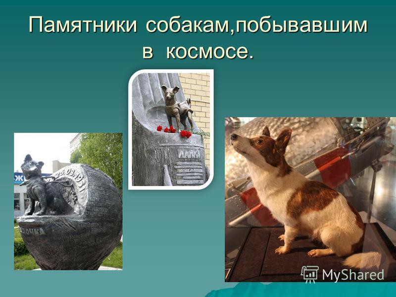 Памятники собакам,побывавшим в космосе.