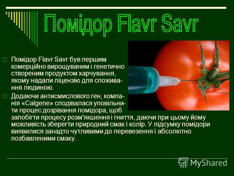 Помідор Flavr Savr був першим комерційно вирощуваним і генетично створеним продуктом харчування, якому надали ліцензію для спожива- ння людиною. Додаючи антисмислового ген, компа- нія «Calgene» сподівалася уповільни- ти процес дозрівання помідора, що