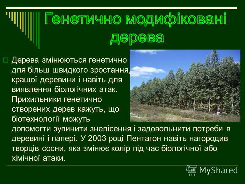 Дерева змінюються генетично для більш швидкого зростання, кращої деревини і навіть для виявлення біологічних атак. Прихильники генетично створених дерев кажуть, що біотехнології можуть допомогти зупинити знелісення і задовольнити потреби в деревині і