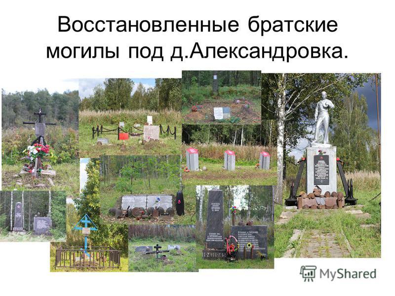 Восстановленные братские могилы под д.Александровка.