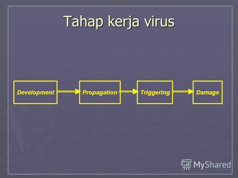 Tahap kerja virus DevelopmentPropagationTriggeringDamage