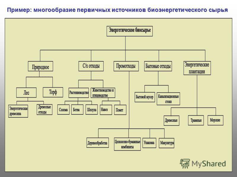 Пример: многообразие первичных источников биоэнергетического сырья