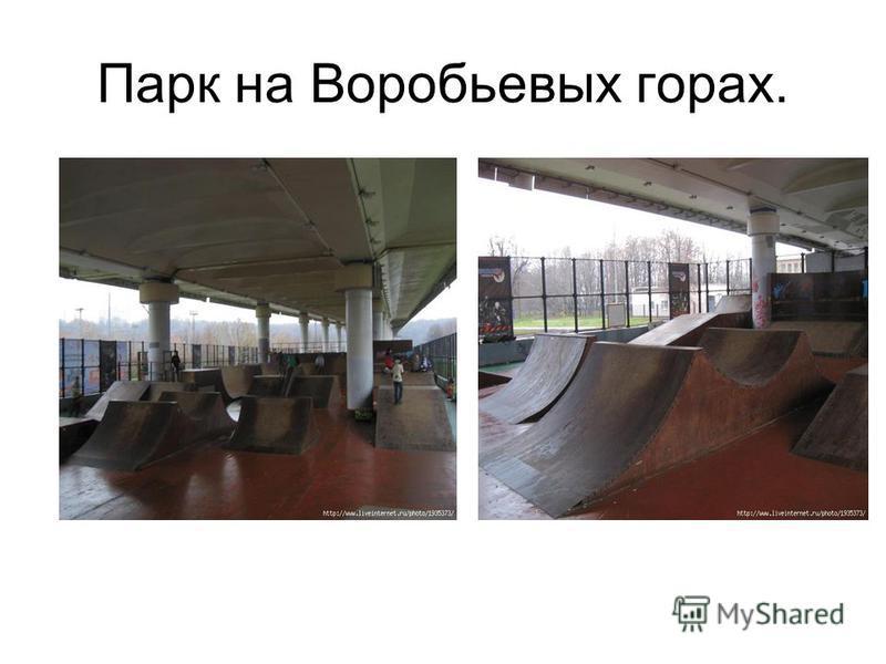 Парк на Воробьевых горах.
