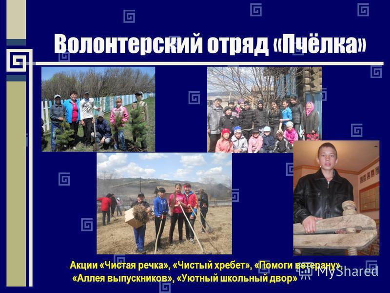Волонтерский отряд «Пчёлка» Акции «Чистая речка», «Чистый хребет», «Помоги ветерану», «Аллея выпускников», «Уютный школьный двор»