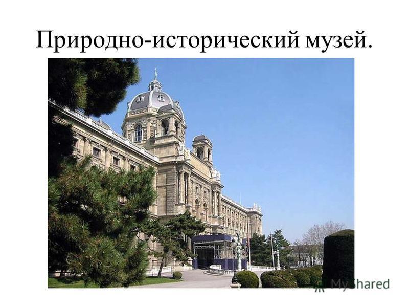 Природно-исторический музей.