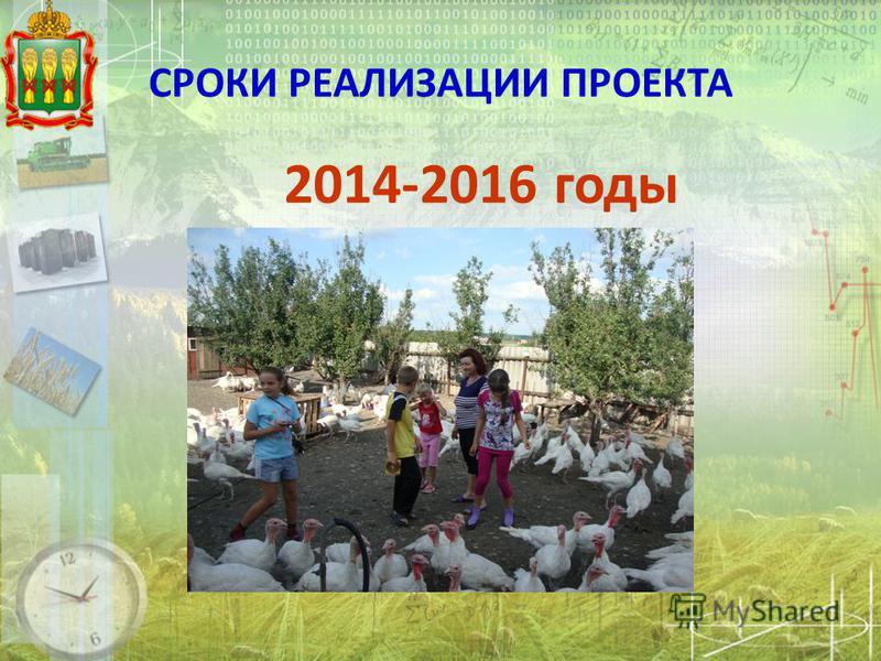 СРОКИ РЕАЛИЗАЦИИ ПРОЕКТА 2014-2016 годы