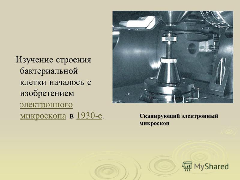 Изучение строения бактериальной клетки началось с изобретением электронного микроскопа в 1930-е. электронного микроскопа 1930-е Сканирующий электронный микроскоп