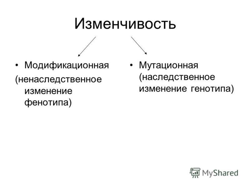 Изменчивость Модификационная (ненаследственное изменение фенотипа) Мутационная (наследственное изменение генотипа)