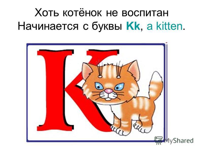 Хоть котёнок не воспитан Начинается с буквы Kk, a kitten.