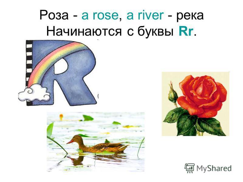 Роза - a rose, a river - река Начинаются с буквы Rr.