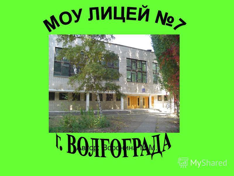 Автор: Воронина М.М.