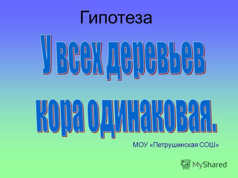 Гипотеза МОУ «Петрушинская СОШ»