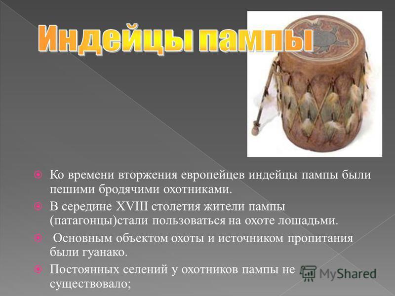 Ко времени вторжения европейцев индейцы пампы были пешими бродячими охотниками. В середине XVIII столетия жители пампы (патагонцы)стали пользоваться на охоте лошадьми. Основным объектом охоты и источником пропитания были гуанако. Постоянных селений у