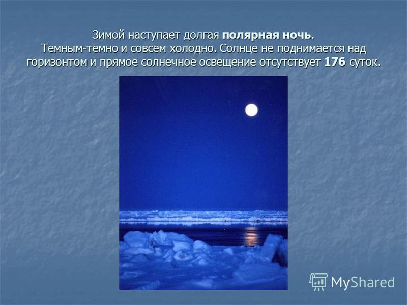 Зимой наступает долгая полярная ночь. Темным-темно и совсем холодно. Солнце не поднимается над горизонтом и прямое солнечное освещение отсутствует 176 суток.