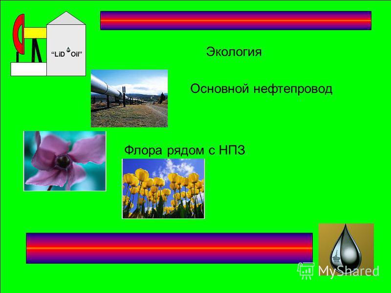 Oil LiD Экология Основной нефтепровод Флора рядом с НПЗ