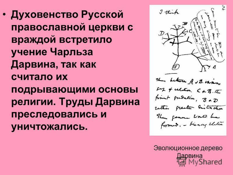 Духовенство Русской православной церкви с враждой встретило учение Чарльза Дарвина, так как считало их подрывающими основы религии. Труды Дарвина преследовались и уничтожались. Эволюционное дерево Дарвина