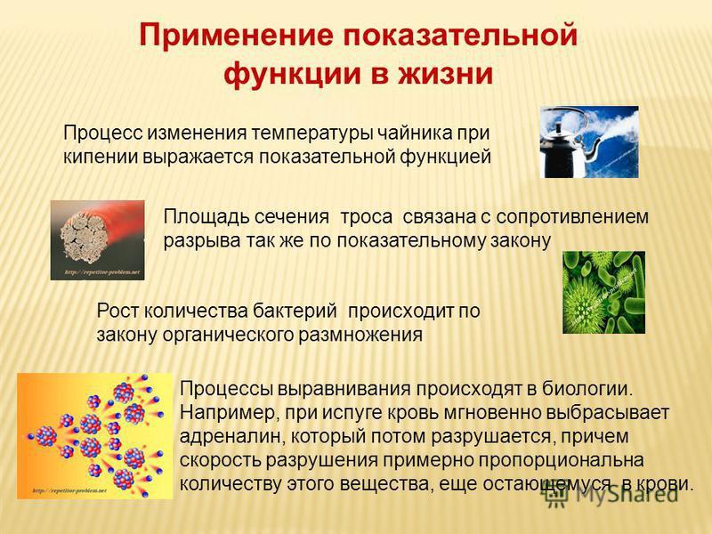 Процесс изменения температуры чайника при кипении выражается показательной функцией Площадь сечения троса связана с сопротивлением разрыва так же по показательному закону Рост количества бактерий происходит по закону органического размножения Процесс
