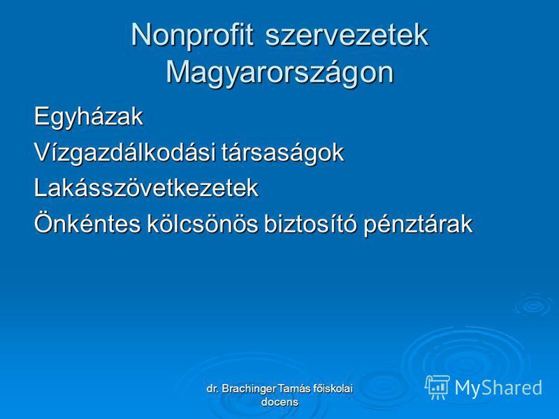 dr. Brachinger Tamás főiskolai docens Nonprofit szervezetek Magyarországon Egyházak Vízgazdálkodási társaságok Lakásszövetkezetek Önkéntes kölcsönös biztosító pénztárak