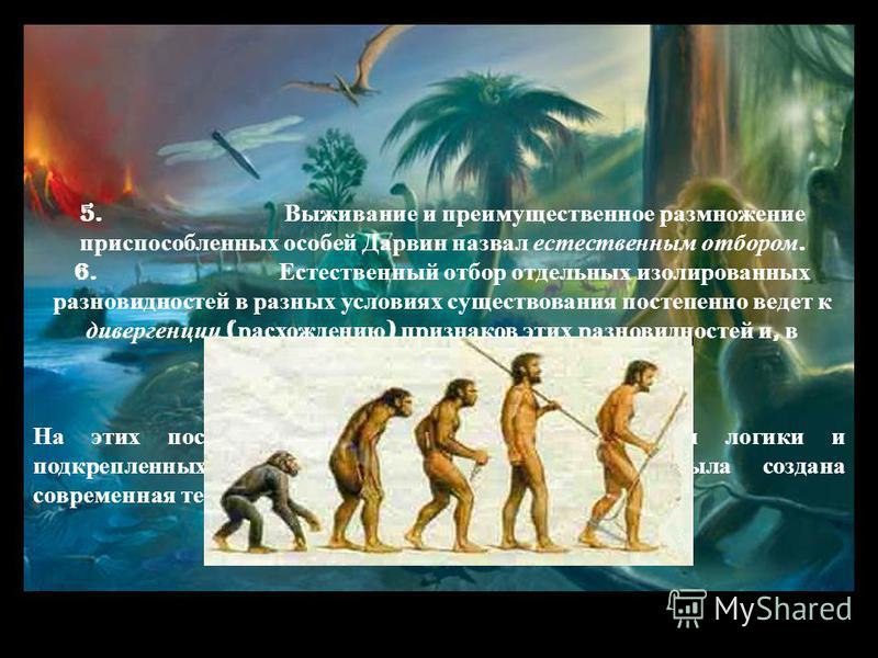 5. Выживание и преимущественное размножение приспособленных особей Дарвин назвал естественным отбором. 6. Естественный отбор отдельных изолированных разновидностей в разных условиях существования постепенно ведет к дивергенции ( расхождению ) признак
