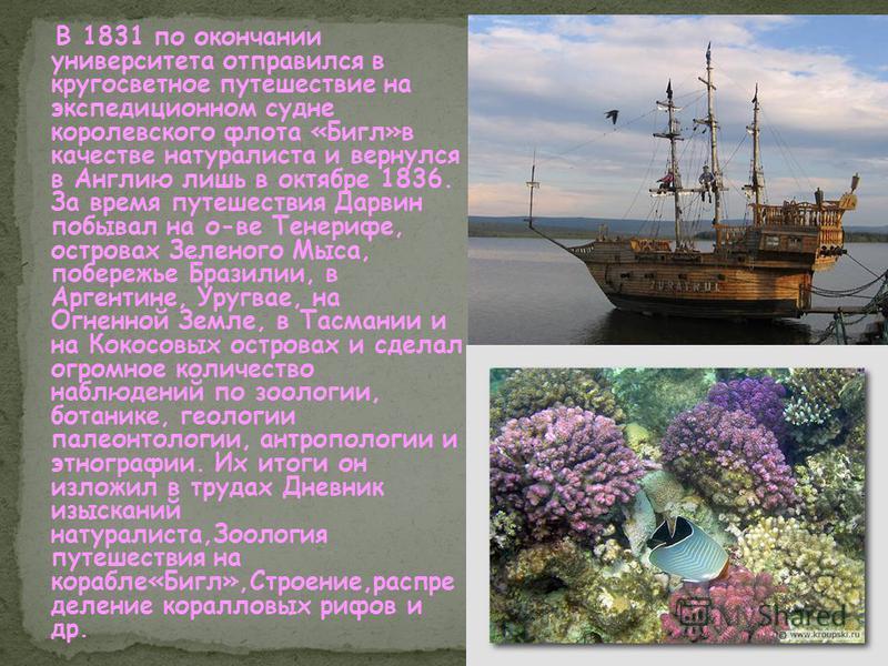 В 1831 по окончании университета отправился в кругосветное путешествие на экспедиционном судне королевского флота «Бигл»в качестве натуралиста и вернулся в Англию лишь в октябре 1836. За время путешествия Дарвин побывал на о-ве Тенерифе, островах Зел