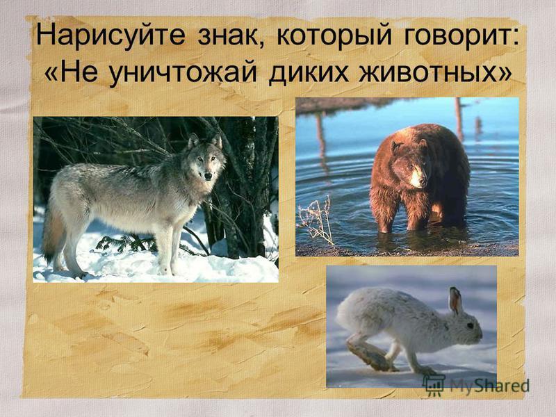 Нарисуйте знак, который говорит: «Не уничтожай диких животных»