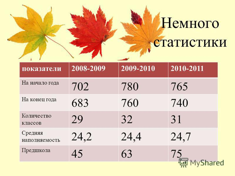 Немного статистики показатели 2008-20092009-20102010-2011 На начало года 702780765 На конец года 683760740 Количество классов 293231 Средняя наполняемость 24,224,424,7 Предшкола 456375