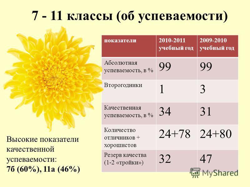 7 - 11 классы (об успеваемости) показатели 2010-2011 учебный год 2009-2010 учебный год Абсолютная успеваемость, в % 99 Второгодники 13 Качественная успеваемость, в % 3431 Количество отличников + хорошистов 24+7824+80 Резерв качества (1-2 «тройки») 32