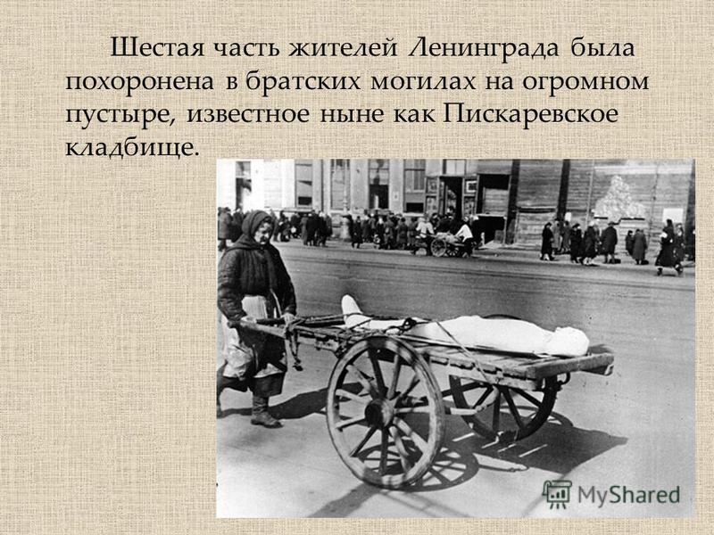 Шестая часть жителей Ленинграда была похоронена в братских могилах на огромном пустыре, известное ныне как Пискаревское кладбище.