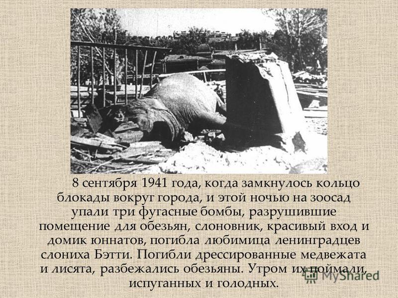 8 сентября 1941 года, когда замкнулось кольцо блокады вокруг города, и этой ночью на зоосад упали три фугасные бомбы, разрушившие помещение для обезьян, слоновник, красивый вход и домик юннатов, погибла любимица ленинградцев слониха Бэтти. Погибли др