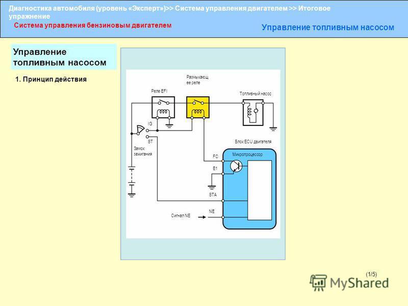 Диагностика автомобиля (уровень «Эксперт»)>> Система управления двигателем >> Итоговое упражнение Система управления бензиновым двигателем Управление топливным насосом (1/5) 1. Принцип действия Размыкающ ее реле Реле EFI Топливный насос IG ST Замок з