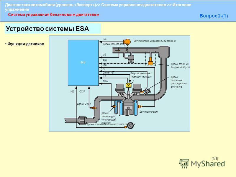 Диагностика автомобиля (уровень «Эксперт»)>> Система управления двигателем >> Итоговое упражнение Система управления бензиновым двигателем Вопрос 2-(1) (1/1) IDL Датчик положения дроссельной заслонки Датчик расхода воздуха VG PIM KNK G Сигнал IGT IGF
