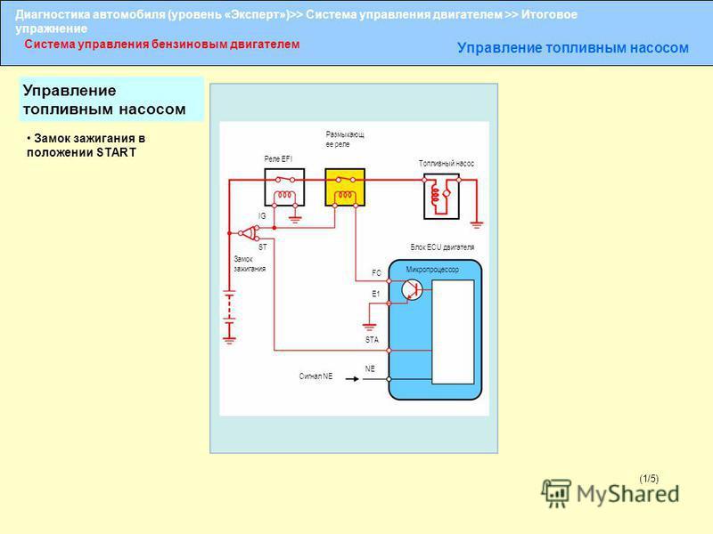 Диагностика автомобиля (уровень «Эксперт»)>> Система управления двигателем >> Итоговое упражнение Система управления бензиновым двигателем Управление топливным насосом (1/5) Размыкающ ее реле Реле EFI Топливный насос IG ST Замок зажигания FC E1 STA N