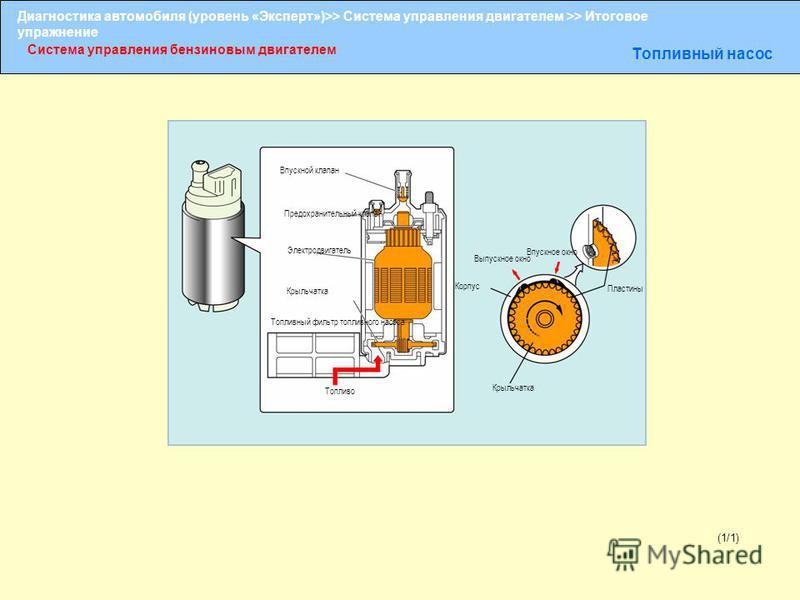 Диагностика автомобиля (уровень «Эксперт»)>> Система управления двигателем >> Итоговое упражнение Система управления бензиновым двигателем Топливный насос (1/1) Впускной клапан Предохранительный клапан Электродвигатель Крыльчатка Топливный фильтр топ