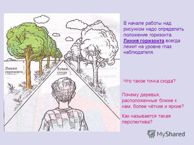 Что такое точка схода? Почему деревья, расположенные ближе к нам, более чёткие и яркие? Как называется такая перспектива? В начале работы над рисунком надо определить положение горизонта. Линия горизонта всегда лежит на уровне глаз наблюдателя.