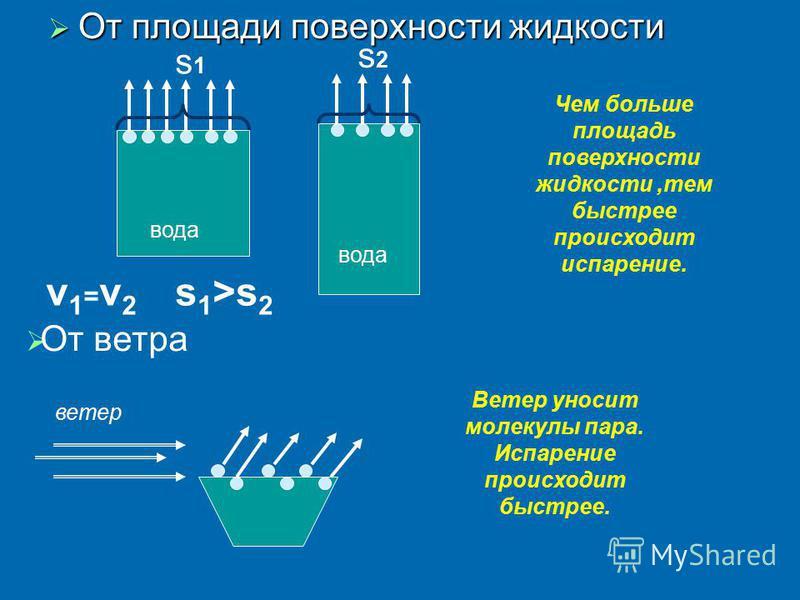От площади поверхности жидкости От площади поверхности жидкости вода v1=v2v1=v2 Чем больше площадь поверхности жидкости,тем быстрее происходит испарение. От ветра ветер Ветер уносит молекулы пара. Испарение происходит быстрее. s 1 >s 2 s1s1 s2s2