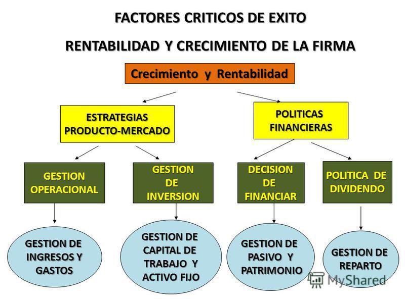 FACTORES CRITICOS DE EXITO RENTABILIDAD Y CRECIMIENTO DE LA FIRMA Crecimiento y Rentabilidad ESTRATEGIASPRODUCTO-MERCADO POLITICASFINANCIERAS GESTIONOPERACIONALGESTIONDEINVERSIONDECISIONDEFINANCIAR POLITICA DE DIVIDENDO GESTION DE INGRESOS Y GASTOS G
