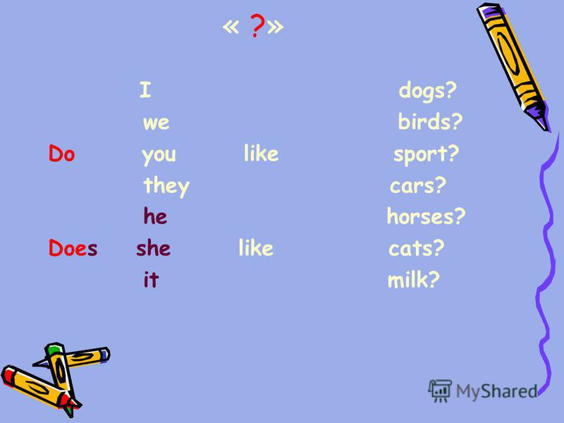 « ?» I dogs? we birds? Do you like sport? they cars? he horses? Does she like cats? it milk?