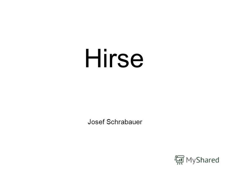Josef Schrabauer Hirse