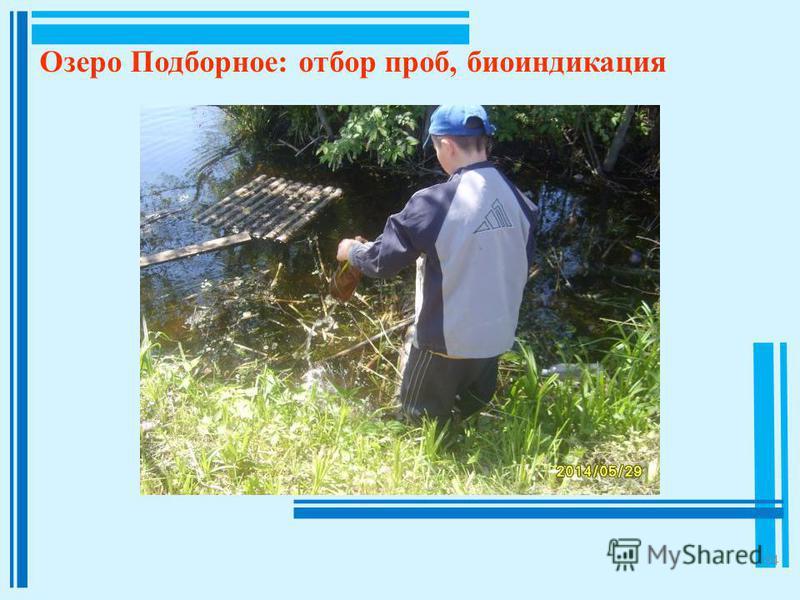 14 Озеро Подборное: отбор проб, биоиндикация