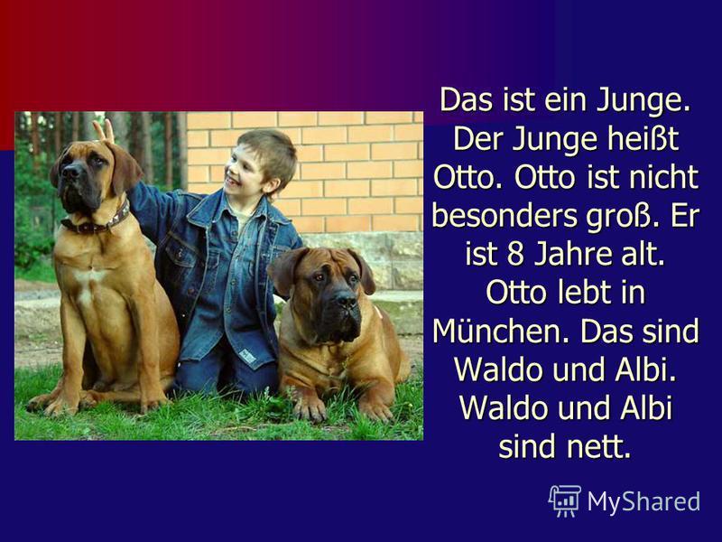 Das ist ein Junge. Der Junge heißt Otto. Otto ist nicht besonders groß. Er ist 8 Jahre alt. Otto lebt in München. Das sind Waldo und Albi. Waldo und Albi sind nett.