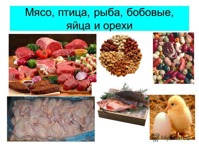 Мясо, птица, рыба, бобовые, яйца и орехи