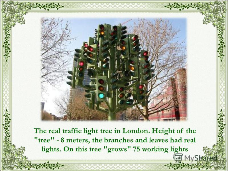 The real traffic light tree in London. Height of the tree - 8 meters, the branches and leaves had real lights. On this tree grows 75 working lights