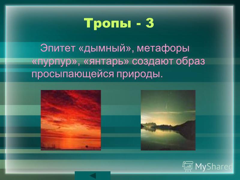 Тропы - 3 Эпитет «дымный», метафоры «пурпур», «янтарь» создают образ просыпающейся природы.