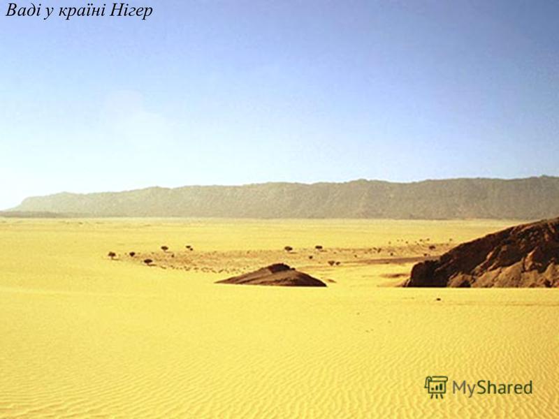 Ваді у пустелі