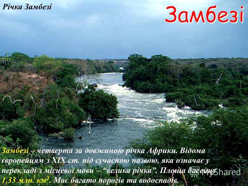 Дельта річки Нігер Впадаючи у Гвінейську затоку, Нігер утворює дельту. Г в і н е й с ь к а з а т о к а Нігер